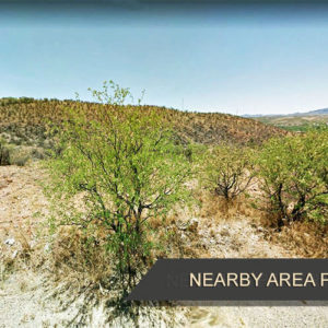 You're Going to Love This Place! Almost Half an Acre for Sale In Rio Rico