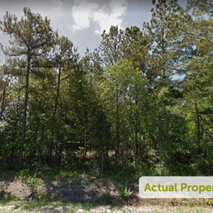 Rural Residential Property - 0.82 Acres in White Oak, NC