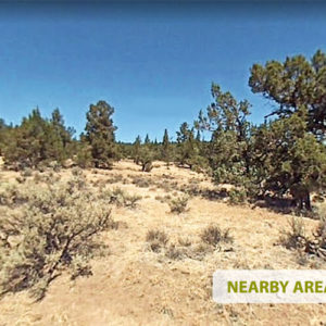 Lakes, Mountains, and Majestic Landscapes - 10 Acres in Modoc County, California