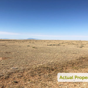 Cowboy Country Near the River - 39.02 Acres in Medicine Bow, WY