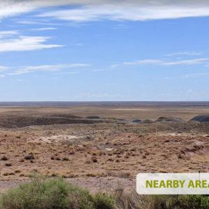 Desert Homestead in Holbrook - 1.25 Acres in Navajo County, Arizona