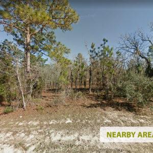 CornerLot Near the Coast- 0.23 Acres in Levy County, Florida